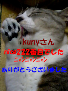222ThankYou.jpg