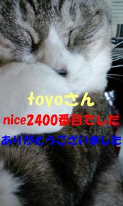 2400niceThankYou.jpg