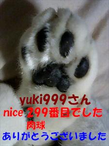 299niceThankYou.jpg