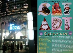 20090223_oazo_CatArtFesta.jpg