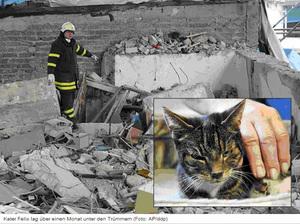 2009_German_5weeks_Felix(untitled).jpg