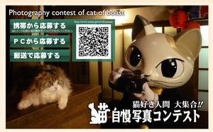 2009_Namco_CatPhotographyContest.jpg